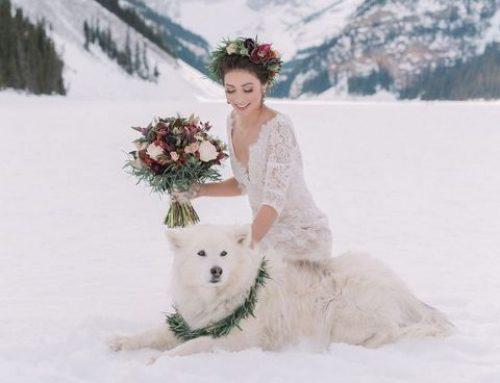 Winter Wedding Photoshoot Ideas
