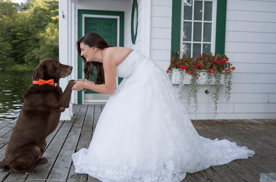 Dog & Bride